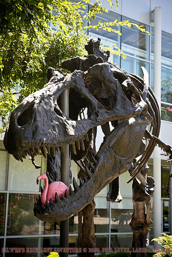 Ah, those wacky Googlers.  Google's pet T-Rex subsists on a steady diet of pink flamingos