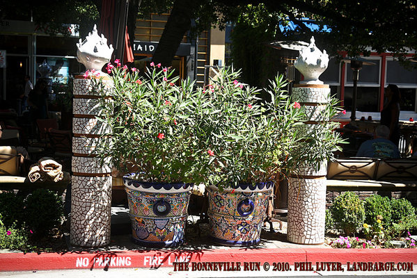 Garden art surrounding the El Jardin Tequila Bar and Restaurant